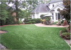 artificial grass runway,pet-friendly artificial turf,dog-friendly synthetic grass,dog-friendly synthetic turf,artificial pet landscape