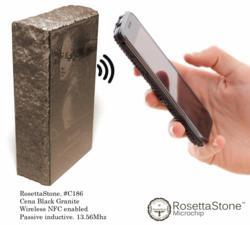 RosettaStone Microchip Desktop #C186