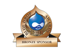 Duo Consulting is a sponsor of the 2013 Blue Drop Awards