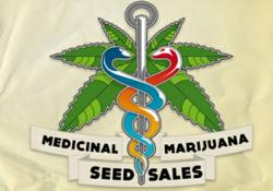 R.M.S.S. Now offering full line of Refferman Medical Marijuana Seeds at http://medicinalmarijuanaseedssales.co.uk
