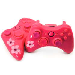 Modded Controllers for girl gamers