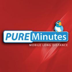 Pure Minutes Logo
