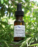 rosemary.essential.oil.Hawaiian