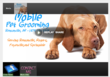 Mobile Pet Grooming (MPG) Shares Summer Grooming and Pet Care Tips