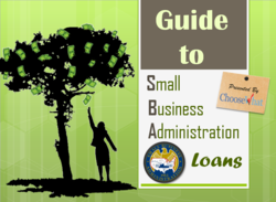 SBA Loans, microloans, real estate, disaster 2013