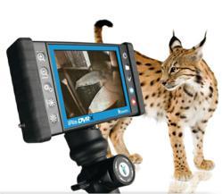 IRis DVRx Video Scope with 4-way Tip Articulation