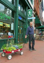 Pedestrian Shops: comfortableshoes.com