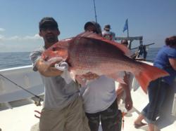Red Snapper in Destin, FL