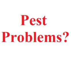 Pest Control Dallas TX