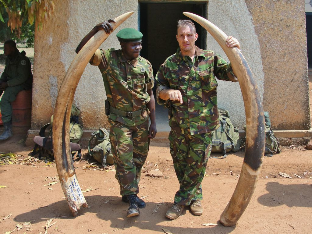 report documents new evidence of elephant poaching by lord
