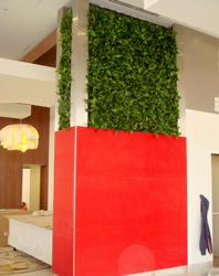 green wall, green wall, living wall, green wall systems, living green wall, gsky, gsky green wall, gsky plant systems, green, green architecture, versa green wall, hotel design, hampton hotels, Homewood Suites by Hilton, denver hotel