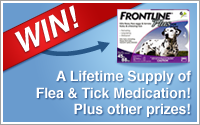 Win a lifetime supply of flea and tick medication for your pet