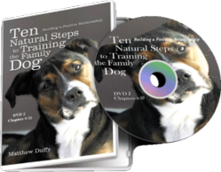 Ten Natural Steps to Training the Family Dog — DVD 1 & DVD 2
