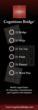 Cognitions Bridge Games: 21 Bridge, 21 Ninja, 21 Flush, 21 Word Play, 21 Tic Toe, 21 Planetz