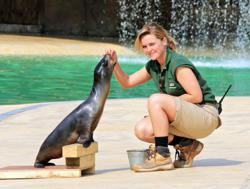 Rub the sealioni with keeper Alyx Milne at Blackpool Zoo