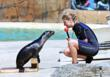 Blackpool Zoo's Rubi with Keeper Alyx Milne