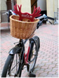 Antlers-bedecked cruiser bikes are free for Antlers at Vail guests to borrow.