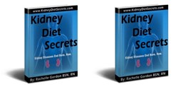kidney disease diet review