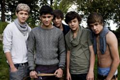 Shop for Cheap One Direction Tickets Online