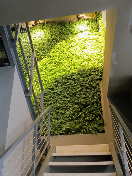 Gsky Living Green Walls: GSky Shakes Up Chain Restaurant's Design With Green Wall