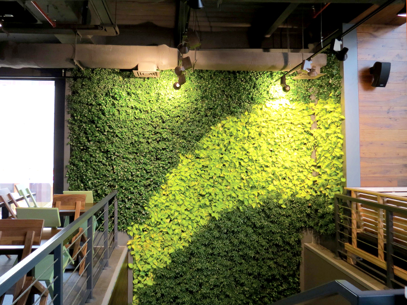 Gsky Shakes Up Chain Restaurant S Design With Green Wall