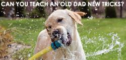 "Teach an ""old"" Dad new tricks with Washdrops."