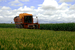 Tax Help MD advises farmers to buy any needed equipment this year.