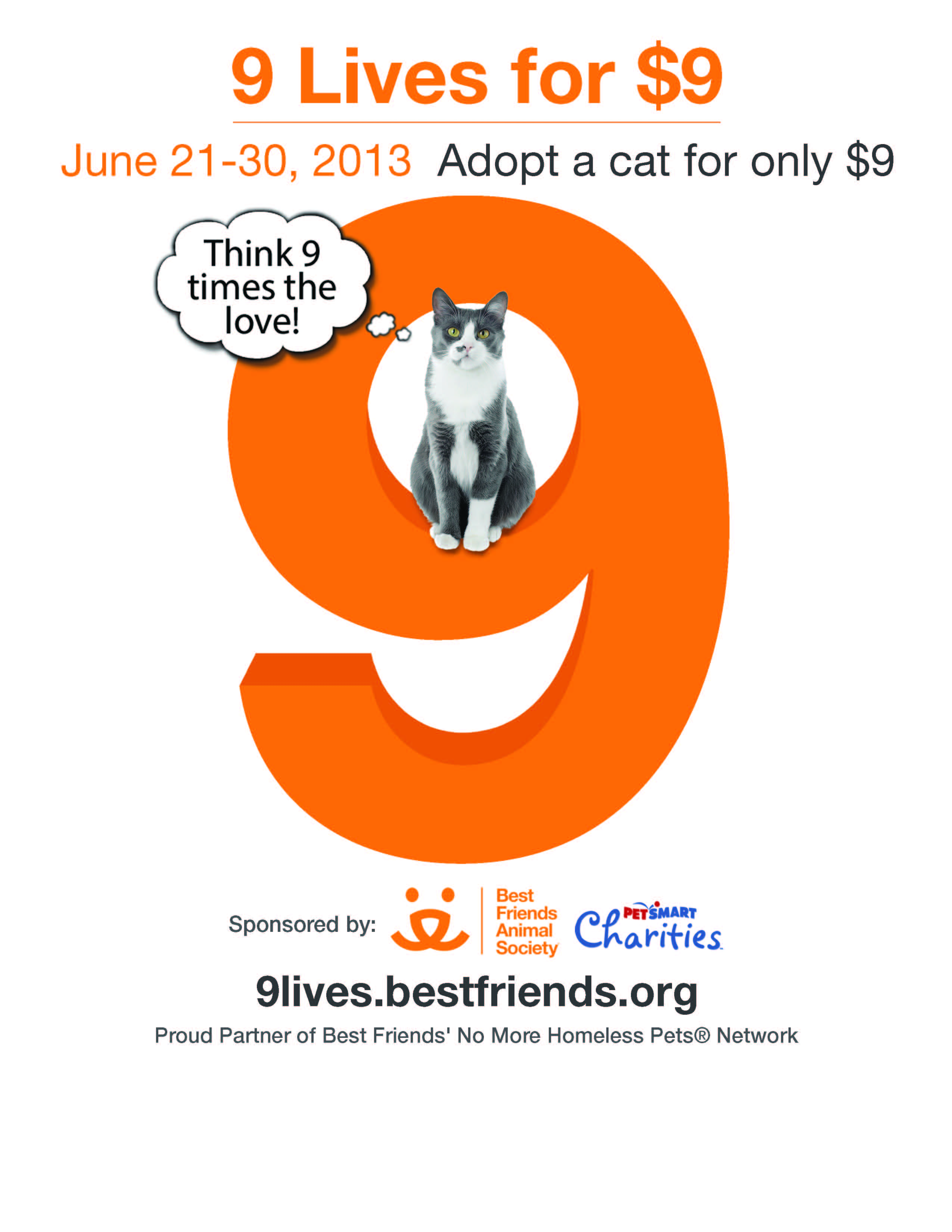 9 Best Selling Crochet Items For A Warm Weather Craft Fair: '9 Lives For $9' Cat Adoption Promotion June 21-30: Best