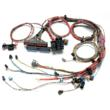 Painless Performance Fuel Injection Harness for GM LS1 Engines