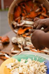 Hyatt Regency Chesapeake Bay Crab Week