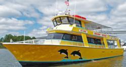 Dolphin Cruise at The Wharf in Orange Beach, AL