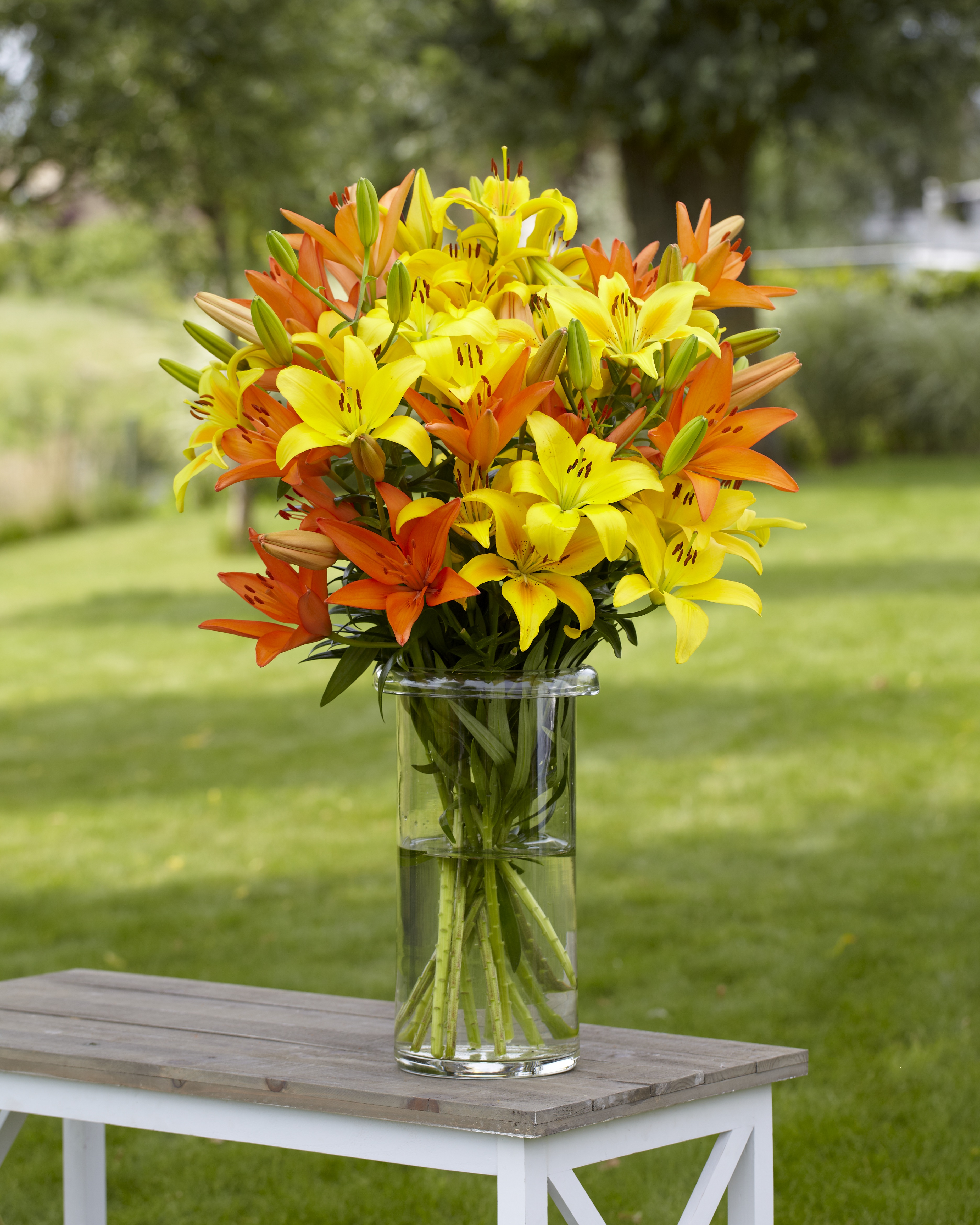 Tips for growing a cutting garden to create gorgeous bouquets freshly picked flowers make instant bouquets that brighten any home reviewsmspy