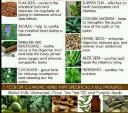 Natural Body Detox Foods