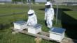 Two Salem4Youth Participants Check on Bee Hives