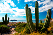Un-Cruise Adventures Offers Adventure Savings On Mexico's Sea of...