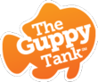The Guppy Tank Will Offer $500,000 to Colorado Entrepreneurs During...