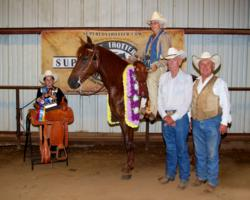 Sally Scott on a Thrill A Minute, Winner of the 1st Annual Missouri Fox Trotting Super Horse Competition