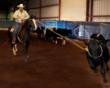 Mickey Gee Roping at the 1st Annual Missouri Fox Trotting Super Horse Competition
