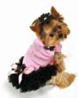 pink-dog-dress-with-black-ruffle-and-pink-bow-with-black-daisy