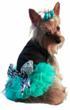 black-dog-dress-with-teal-chiffon-ruffles