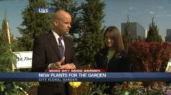 City Floral Garden Center | Good Day Good Garden Video Segments | Denver, CO
