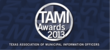 Vision Internet Clients Shine at 2013 TAMI Awards