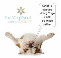 Yoga, Meditation, Eagan, Minnesota, Healing