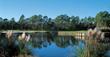 Golf in Myrtle Beach Has Its Rewards