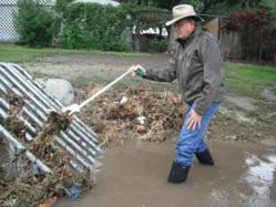 Storm Clean Up