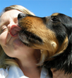 Dallas-based Park Cities Pet Sitter, Inc. Has Multiple Open Positions...