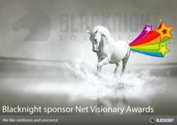 Blacknight Sponsor IIA NetVisionary Awards 2013