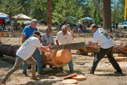 Competitors try to get the best time in the hand saw competition at the annual North Fork Loggers Jamboree