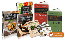 paleo diet recipes review
