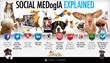 social media dog infographic